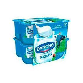 DANONE IOGURT NATURAL 12X125GR